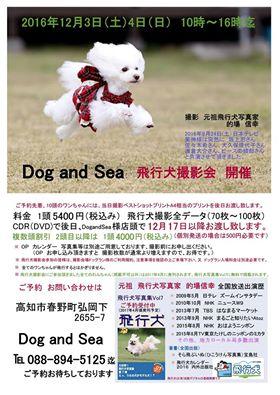 飛行犬撮影会ポスター