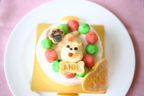 犬用バースデーケーキアンちゃん