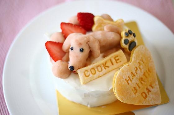 犬用バースデーケーキクッキーくん